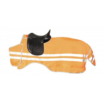 Horse Guard B'Seen Riding Rug