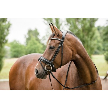 Horse Guard Classic Ergo anatomic bridle