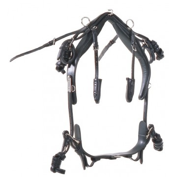 W-Leather harness