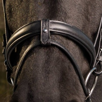 Globus SuperSoft bridles