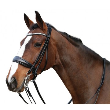 Horse Guard Classic Ergo Double Bridle