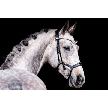 PS of Sweden Pioneer Revolution Bridles